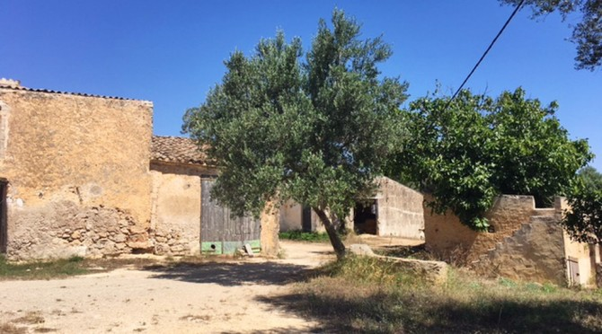 Big Finca to sale_South east_Mallorca