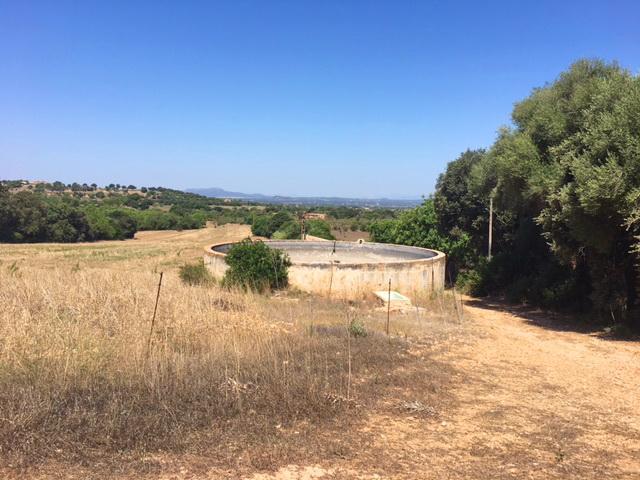 Grosse Finca zu Verkaufen_Südosten_Mallorca