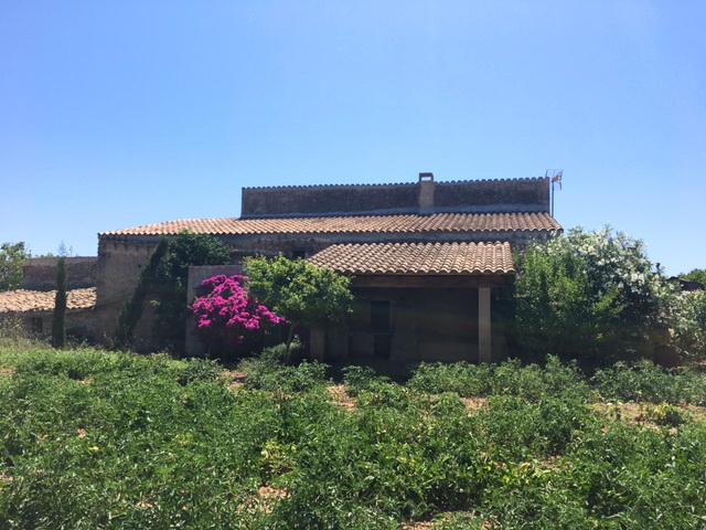 Proyecto_Agroturismo_Mallorca